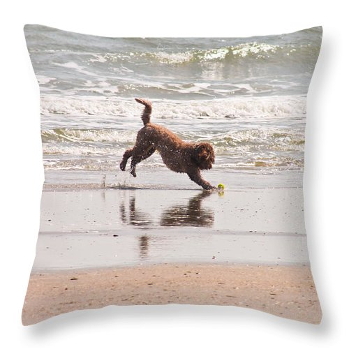Dog Throw Pillow featuring the photograph Beach Ball by Jessica Brown