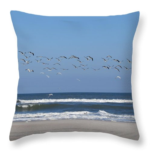 Birds. Birds Of Florida Throw Pillow featuring the photograph Beach Birds In Flight by Ellen Meakin
