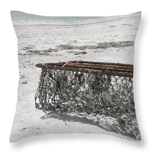 Clearwater Beach Throw Pillow featuring the photograph Beach Finds by Georgia Fowler