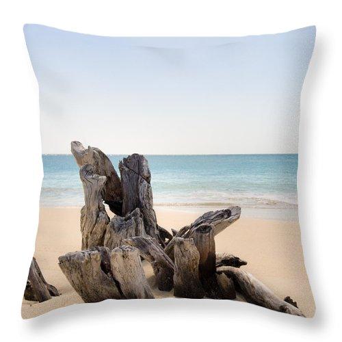 Antigua And Barbuda Throw Pillow featuring the photograph Beach Trunk by Ferry Zievinger