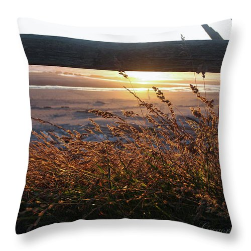 Beach Under Fence Throw Pillow featuring the photograph Beach Under Fence by Safe Haven Photography Northwest