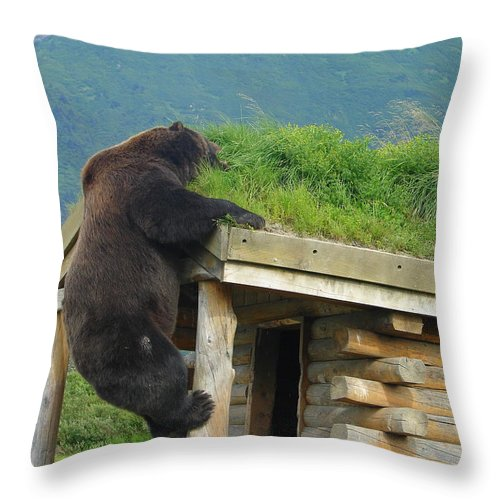 Animal Throw Pillow featuring the photograph Bearly Able by Lew Davis