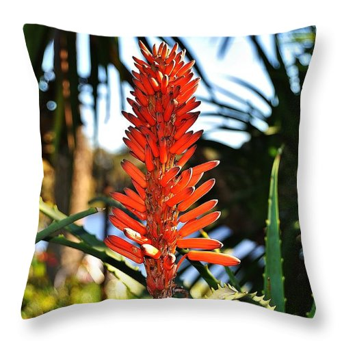 #beatiful #red #garden #sydney #plants #botanic #colour Throw Pillow featuring the photograph Beatiful Red by Stefan Pettersson