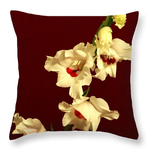 Flowers Throw Pillow featuring the photograph Beautiful Array by Deborah Crew-Johnson