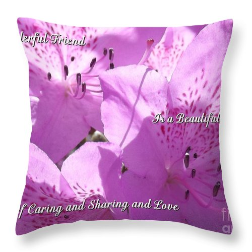 Friend Throw Pillow featuring the photograph Beautiful Blend by Sara Raber
