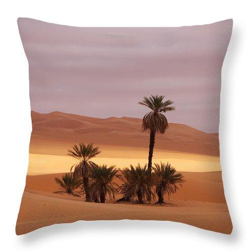 Desert Throw Pillow featuring the photograph Beautiful Desert by Ivan Slosar