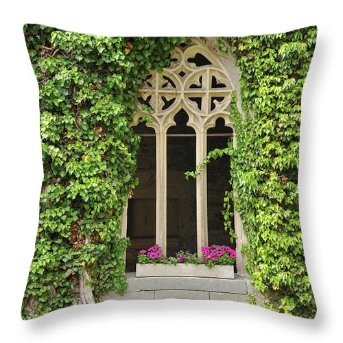 Window Throw Pillow featuring the photograph Beautiful Old Window by Matthias Hauser