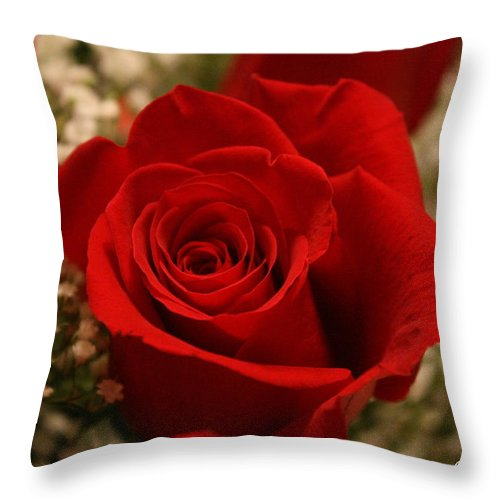 Throw Pillow featuring the photograph Beautiful Rose by Bobby Uzdavines