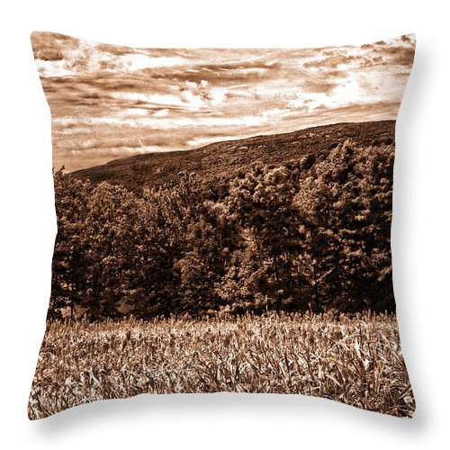 Landscape Throw Pillow featuring the photograph Beautiful View by Madeline Ellis