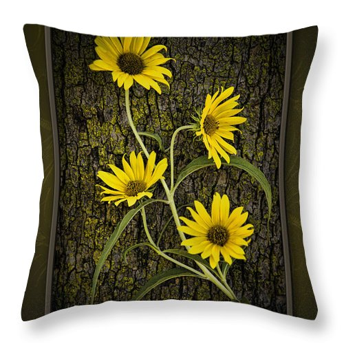 Yellow Throw Pillow featuring the photograph Beauty And Bark by Cindy Tiefenbrunn