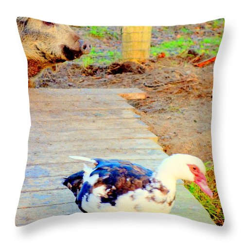 Pig Throw Pillow featuring the photograph I Might Be The Beast But Are You Really The Beauty by Hilde Widerberg