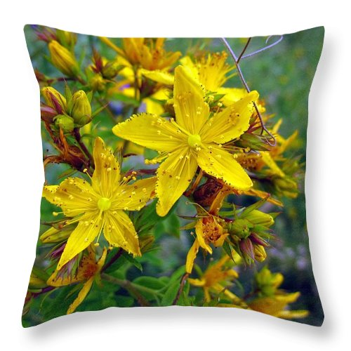 Flowers Throw Pillow featuring the photograph Beauty In A Weed by I'ina Van Lawick