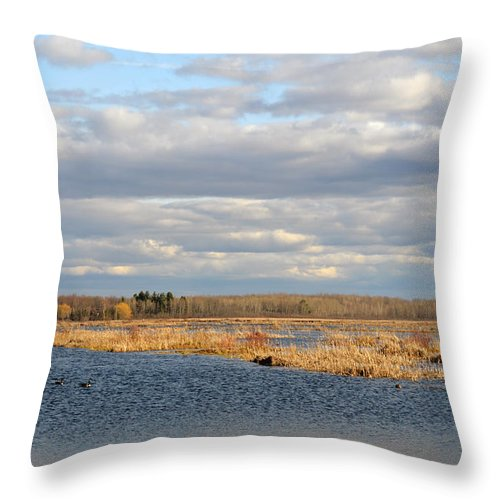 Houghton Lake Throw Pillow featuring the photograph Beauty In Nature by Linda Kerkau