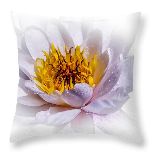 Waterlily Throw Pillow featuring the photograph Beauty Lies Within by Sherman Perry