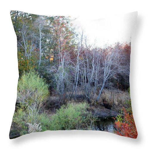 Autumn Photographs Throw Pillow featuring the photograph Beauty Of Nature by Ester Rogers