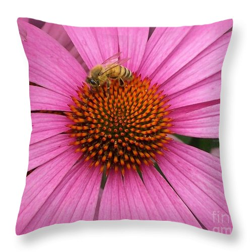 Bee Throw Pillow featuring the photograph Bee In The Pink by Linda Galok