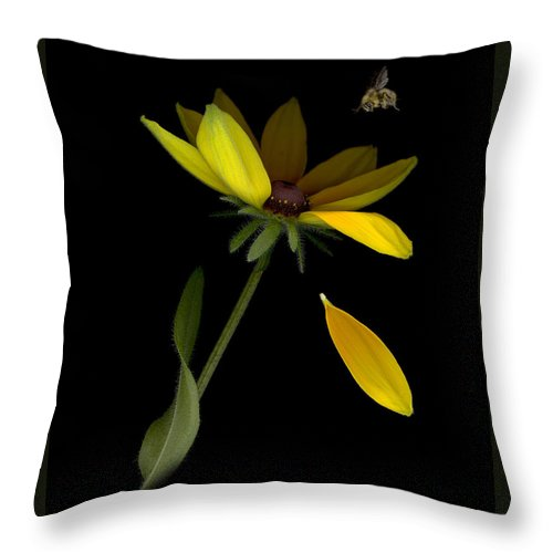Flowers Throw Pillow featuring the photograph Bee Loves Me by Sandi F Hutchins