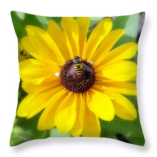 Daisy Throw Pillow featuring the photograph Bee Mine-2 by Charles Feagans