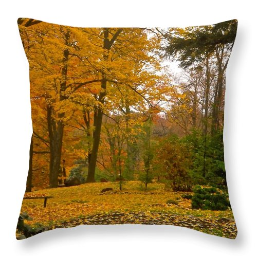 Orange Throw Pillow featuring the photograph Beechwood Cemeter by Stephanie Moore