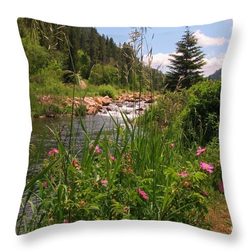 Water Fall Prints Throw Pillow featuring the photograph Bees Eye View by John Malone