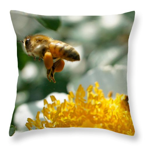 Bee Throw Pillow featuring the photograph Bee's Feet by TK Goforth