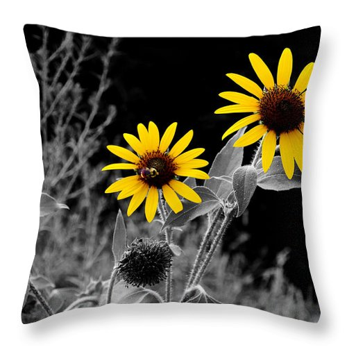 Sunflower Throw Pillow featuring the photograph Being Busy by David Pantuso