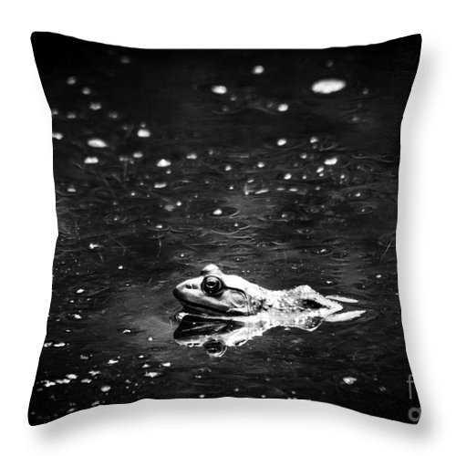 Frog Throw Pillow featuring the photograph Being Green In Black And White by Cheryl Baxter