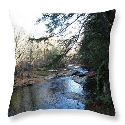River Throw Pillow featuring the photograph Belvidere Junction Stream Vermont by Barbara McDevitt