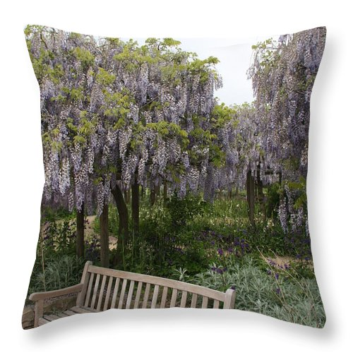 Flowers Throw Pillow featuring the photograph Bench And Wisteria by Christiane Schulze Art And Photography
