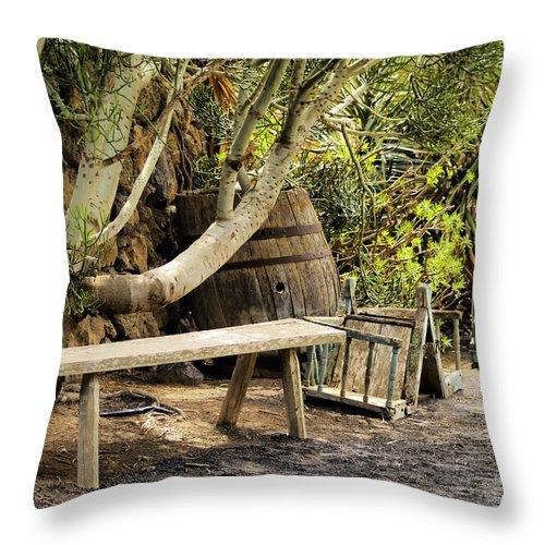 Bench Throw Pillow featuring the photograph Bench by Karol Kozlowski