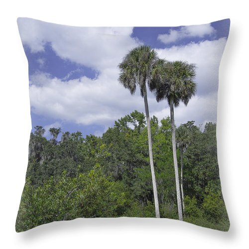 Trees Throw Pillow featuring the photograph Benched At Rainbow Springs Campground by Judy Hall-Folde