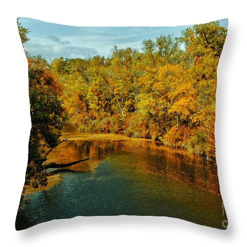 Texas Throw Pillow featuring the photograph Bend In The Navasota by Robert Frederick