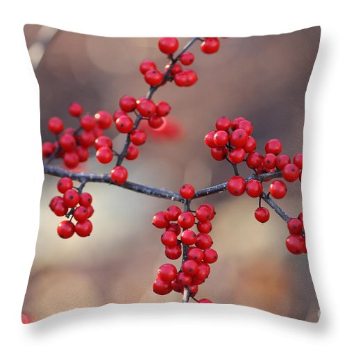 Red Throw Pillow featuring the photograph Berry Sparkles by Ulli Karner