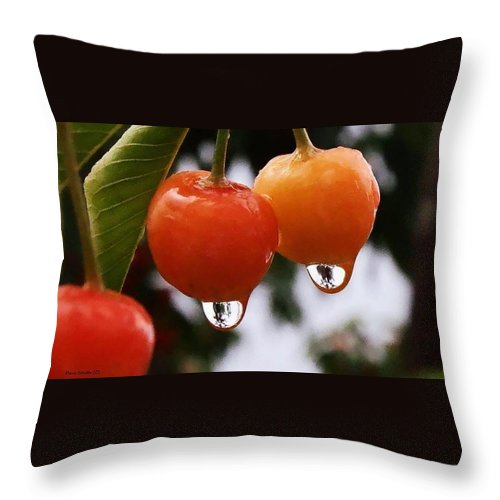 Berry Throw Pillow featuring the photograph Berry Wet by Dave Smith