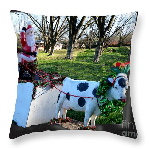 Cow Throw Pillow featuring the photograph Betsy The Red Nose Moo-cow by Donna Brown