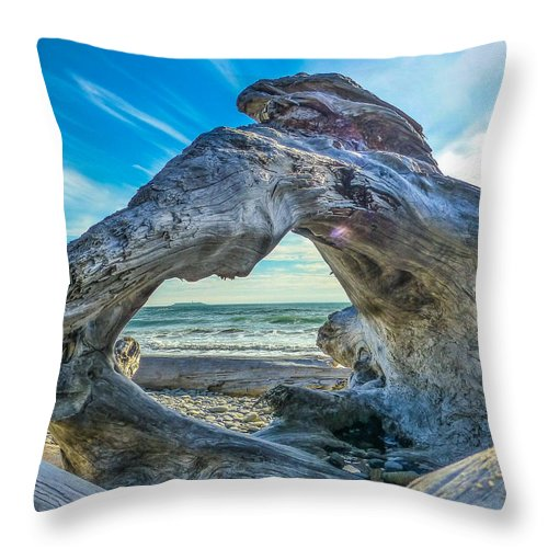 Landscape Throw Pillow featuring the photograph Beyond The Beach by Gina Herbert