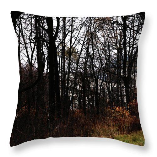 Woods Throw Pillow featuring the photograph Beyond The Layer by Linda Shafer