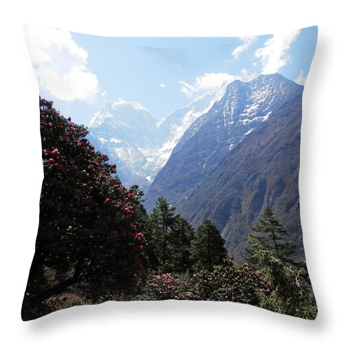 Rhododendrons Throw Pillow featuring the photograph Beyond The Rhododendrons 1 by Pema Hou