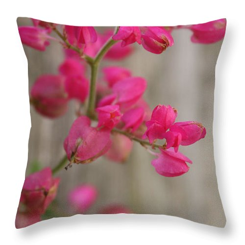 Flowers Throw Pillow featuring the photograph Beyond Words by Kenneth Cykala