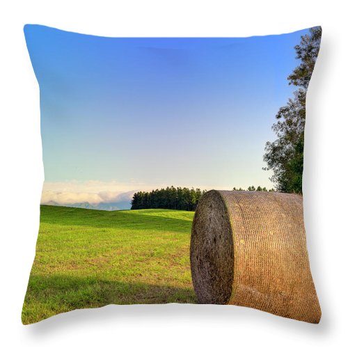 Tranquility Throw Pillow featuring the photograph Biei, Hokkaido Japan by Photo By Johnny Ngai
