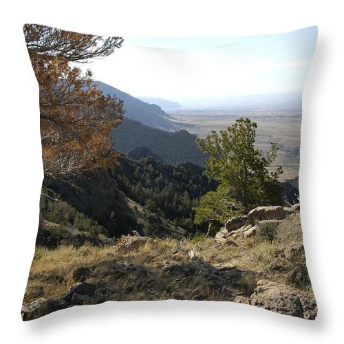 Wyoming Throw Pillow featuring the photograph Bighorn Mountains-wy by Dennis Rundlett