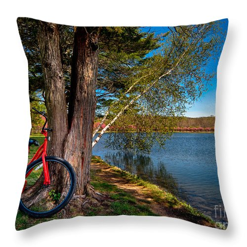 Transportation Throw Pillow featuring the photograph Biking To Horseshoe Lake by Mark Miller