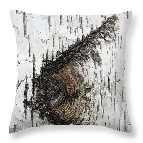Birch Throw Pillow featuring the photograph Birch Textures 30 by Mary Bedy