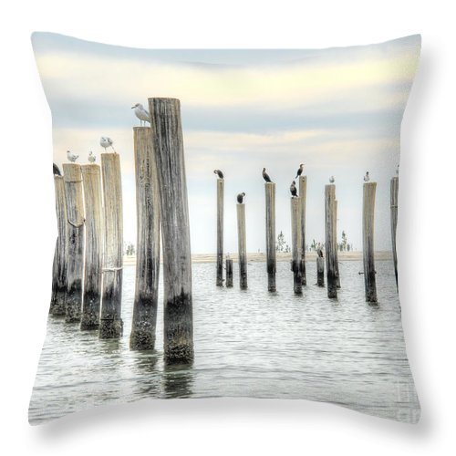 Birds Throw Pillow featuring the photograph Bird Haven by Anthony Wilkening