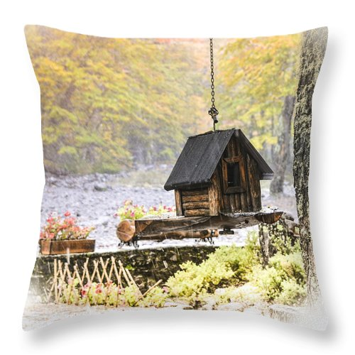 Bird Throw Pillow featuring the photograph Bird House In Autumn by Maria isabel Villamonte