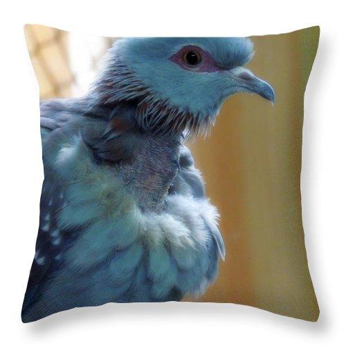 Blue Throw Pillow featuring the photograph Bird In Blue Dress by Munir Alawi
