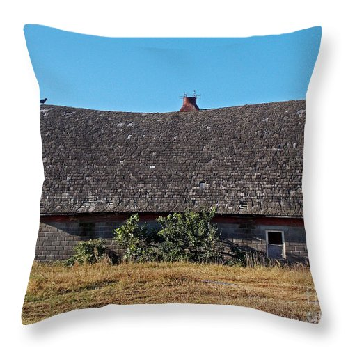 Scenic Tours Throw Pillow featuring the photograph Bird Of Death by Skip Willits