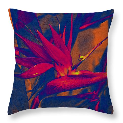 Bird Of Paradise Throw Pillow featuring the photograph Bird Of Paradise Flower by Susanne Van Hulst