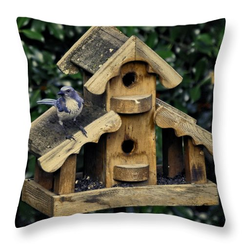 Oregon City Throw Pillow featuring the photograph Bird On A House by Image Takers Photography LLC - Carol Haddon