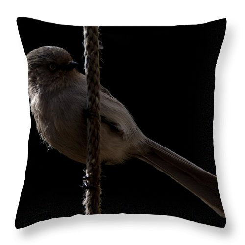 Bushtit Throw Pillow featuring the photograph Bird On A Rope 2 by Ernie Echols